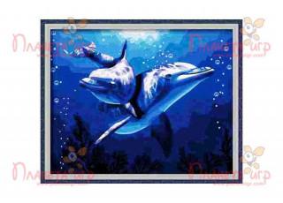 Раскраска по номерам. Два дельфина (40х50)