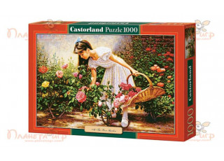 Пазл В розовом саду, 1000 эл.
