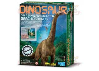 Раскопки. Брахиозавр
