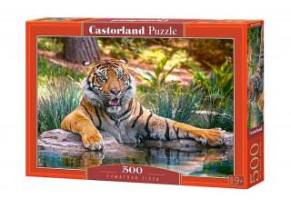 Пазл Суматранский тигр, 500 эл.