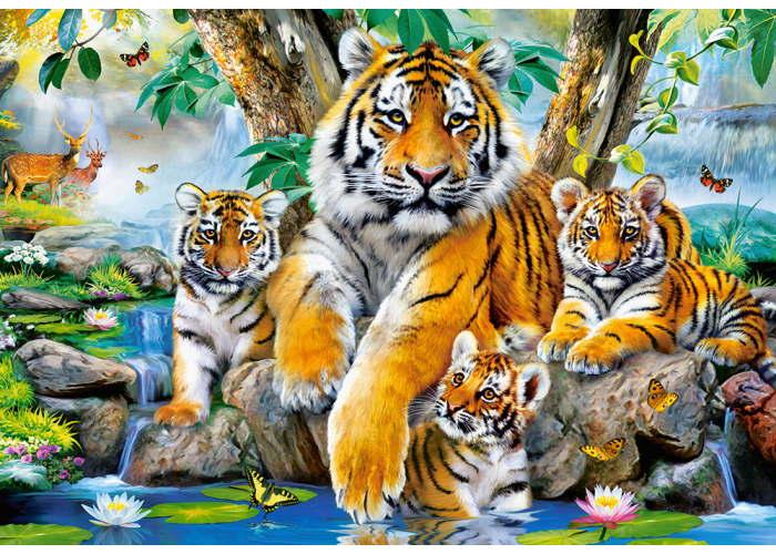 Пазл Семья тигров у ручья, 1000 эл.