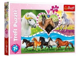 Пазл Красивые кони, 200 эл.