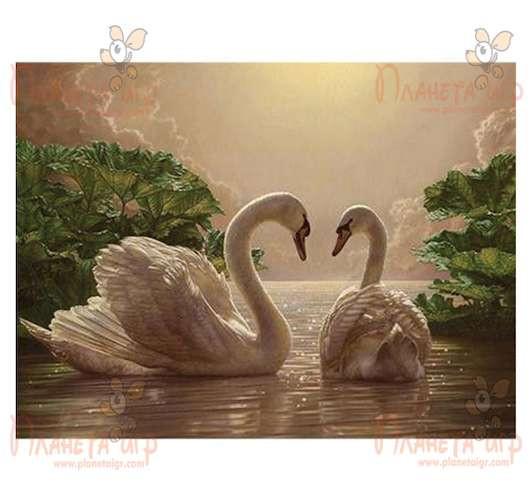 раскраска по номерам пара лебедей 40х50 купить картины