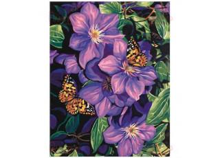 Раскраска по номерам. Бабочки на цветах (40х50)