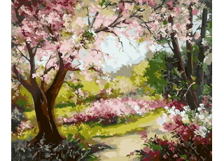 Раскраска по номерам Весенний сад (40х50)