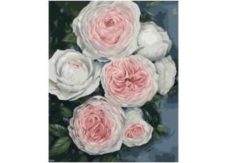 Раскраска по номерам. Удивительные розы (40х50)