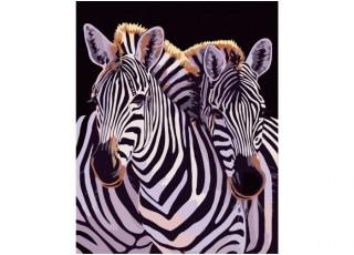 Раскраска по номерам На пикник (40х50)