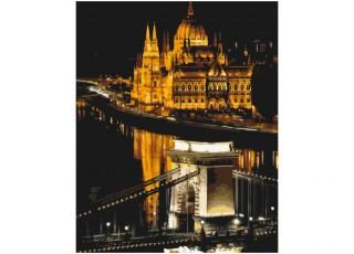 Раскраска по номерам В розовом стиле (40х50)