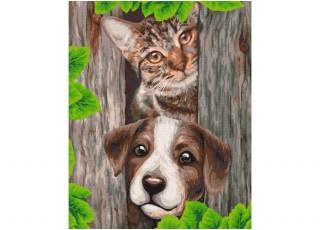 Раскраска по номерам Душистые цветы (40х50)