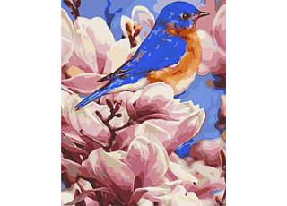 Раскраска по номерам Яркая птичка (40х50)