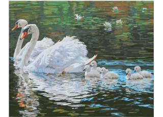 Раскраска по номерам Лебеди на пруду (40х50)