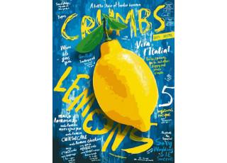 Раскраска по номерам Сочный лимон (30х40) (без коробки)