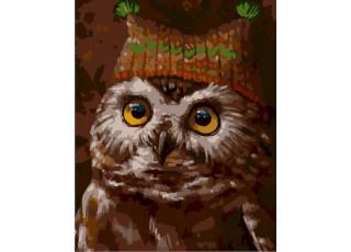 Раскраска по номерам Сова в шапке (40х50)