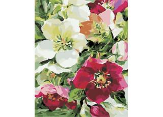 Раскраска по номерам Цветочное настроение (40х50)