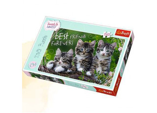 Пазл Дружные котята, 260 эл.