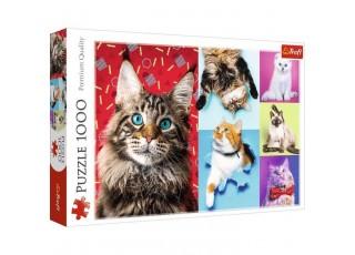 Пазл Счастливые кошки, 1000 эл.
