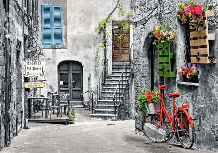 Пазл Очаровательная аллея с красным велосипедом, 500 эл.