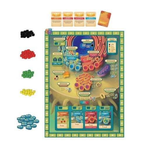 Микромир: Биология клетки (Cytosis: A Cell Biology)